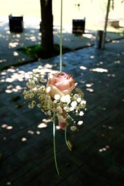 mariage decoration fleurs 14 250x375 - Un mariage dans le vaucluse