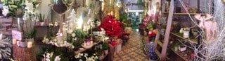 img 1227 1 - Décoration de Noël de votre fleuriste