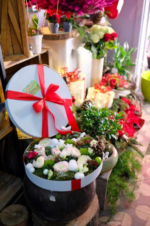 fleuriste pines de paradis cadeau de no l. Black Bedroom Furniture Sets. Home Design Ideas