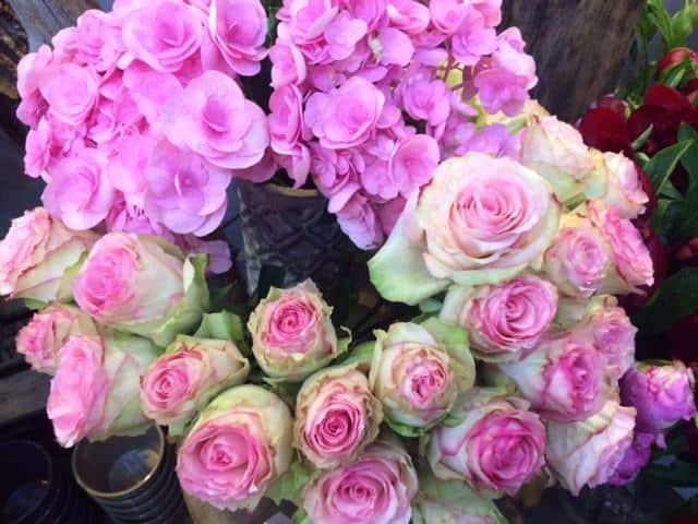 FÊTE DES MÈRES fleurs 1 - FÊTE DES MÈRES