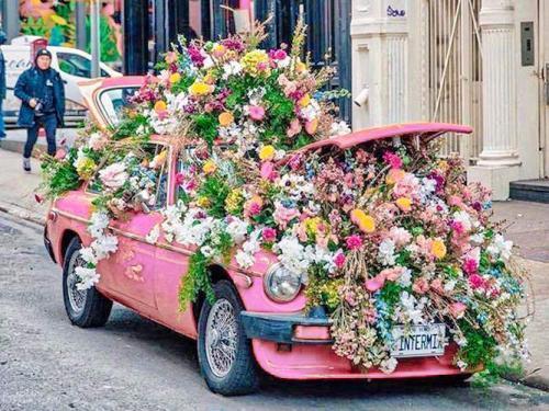 livraison bouquet marseille 500x375 - La livraison de fleurs à domicile...