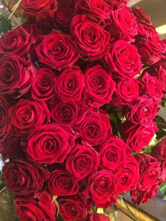 IMG 6795 563x750 - Saint Valentin