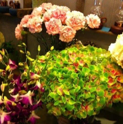 fleurs saison 4 e1470128057773