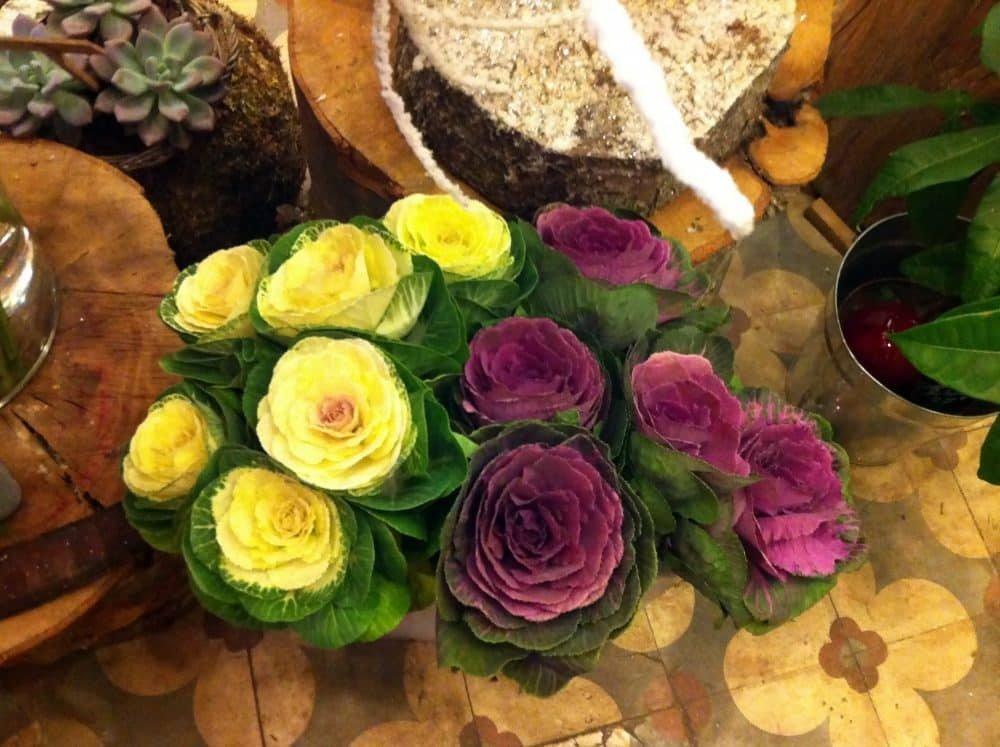 fleurs saison e1470055635481