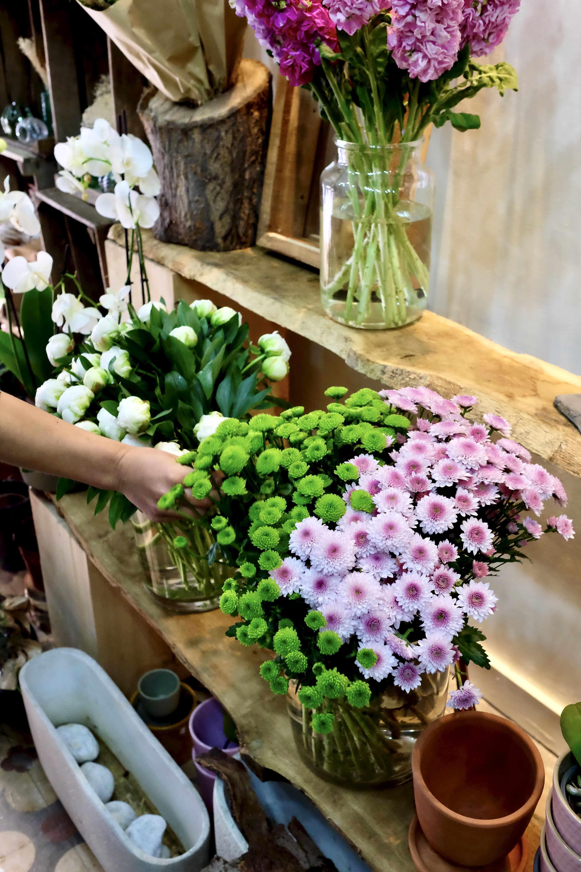 DSCF4896 - Arrivage de plantes et de fleurs pour la livraison