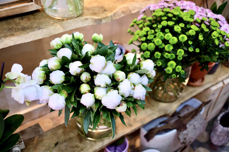DSCF4898 - Arrivage de plantes et de fleurs pour la livraison