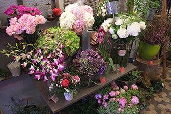 fleurs marseille saison - Fleuriste Marseille