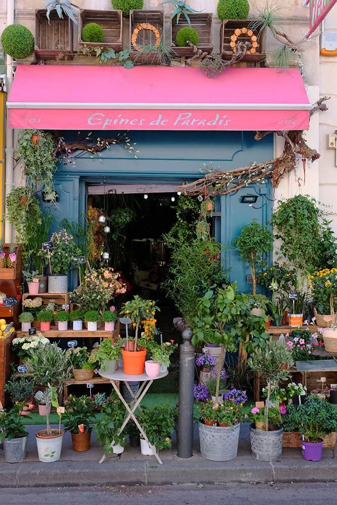 fleuriste ouvert marseille 5 - Fleuriste Marseille